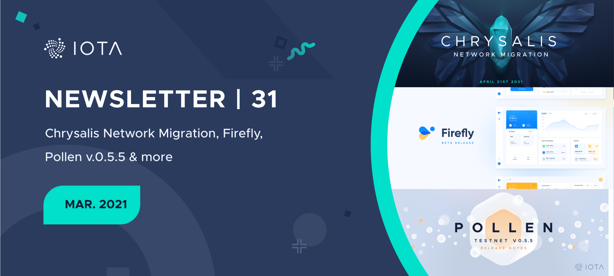 IOTA Newsletter #31 - Chrysalis Network Migration, Firefly, Pollen v0.5.5 & more.
