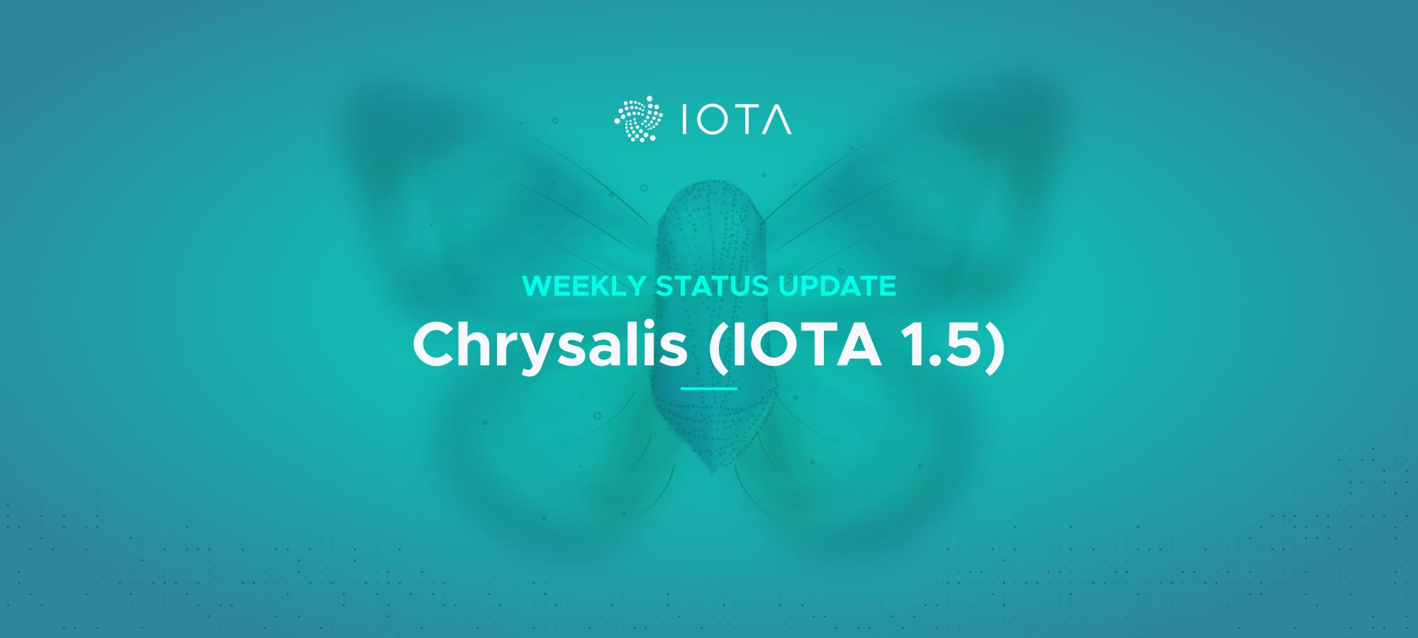 Chrysalis update — December 4